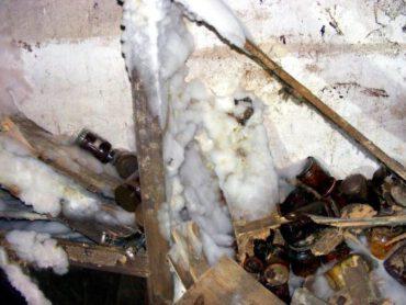 Echter Hausschwamm, weißes Oberflächenmycel in Keller, Vorratsraum